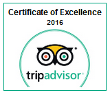 2016CertificateofExcellence